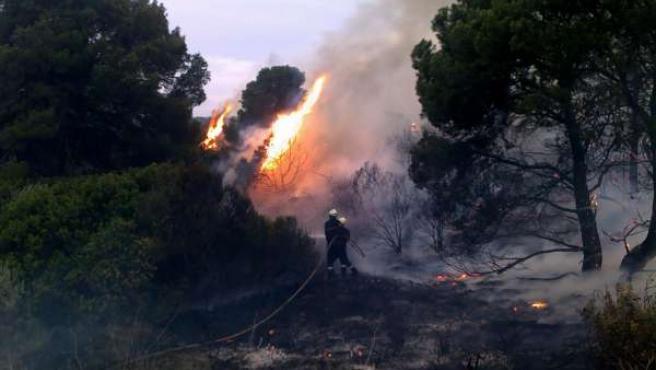 Bomberos de Navarra extinguen un fuego en el Vedado de Eguaras (Valtierra).