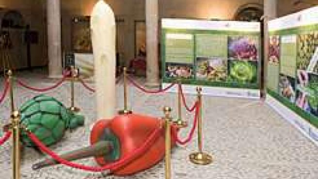La exposición 'Sabores y emociones, verduras de Navarra' se exhibe en Santander