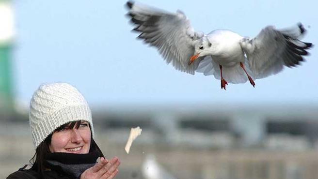 Una mujer da de comer a una gaviota, en pleno vuelo.