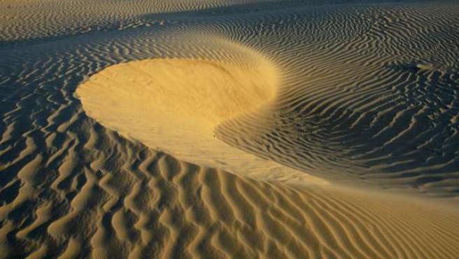 Imágen de la duna del Inglesillo, en Doñana