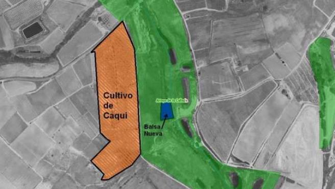 Mapa del área en el que se ha localizado la balsa ilegal, en el Arroyo de la Cañ
