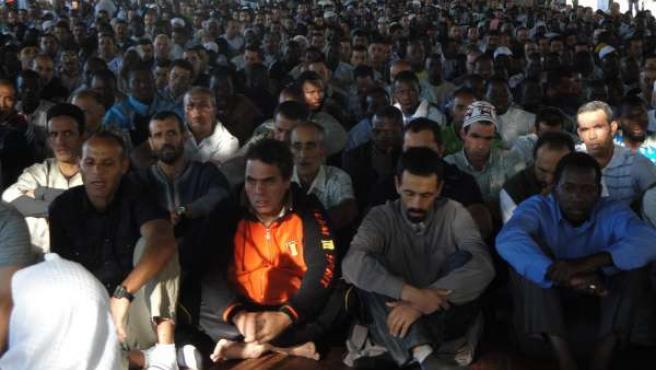 Muslmanes rezando en los Camps Elisis de Lleida en el último día del Ramadán. 10