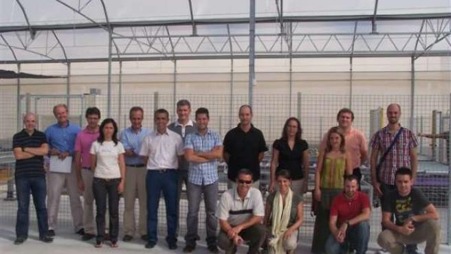 Investigadores en el invernadero experimental