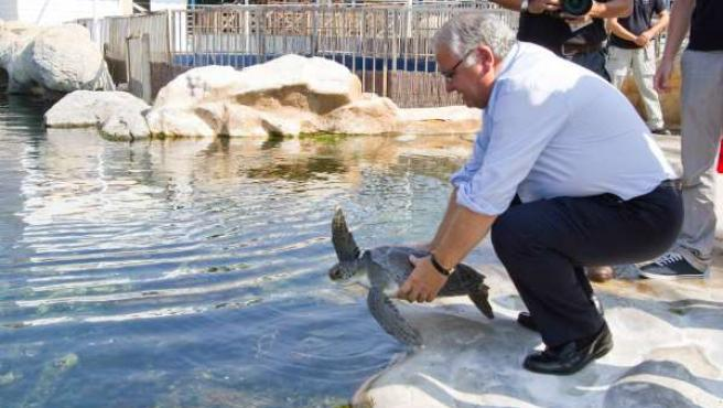 El conseller en la visita al Arca del Mar