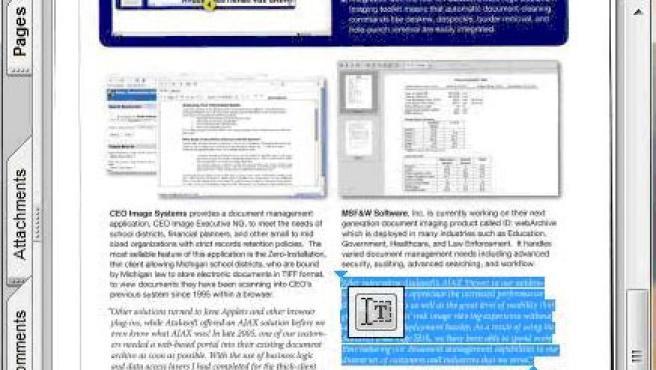 Imagen de un documento en formato PDF.