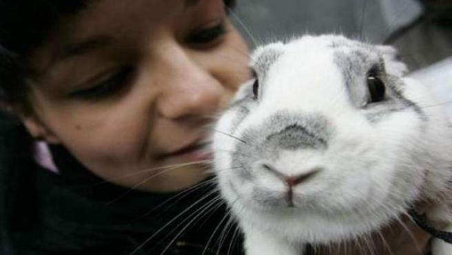 Las mascotas producen efectos relajantes en nuestro organismo.