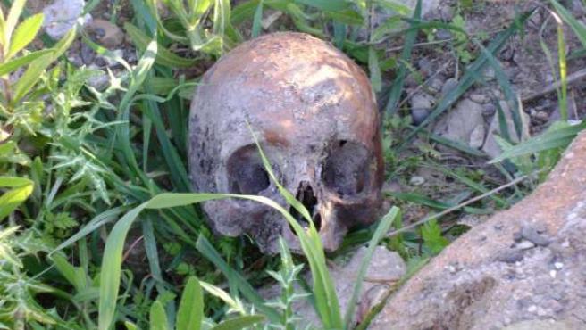 Restos encontrados en La Corta