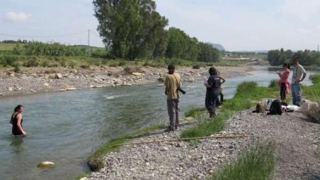 Voluntarios En El Análisis De Un Río