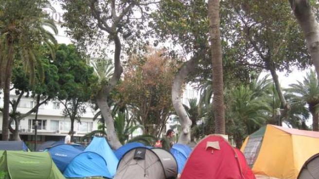 Acampada Del 15M En El Parque De San Telmo De Las Palmas De Gran Canaria
