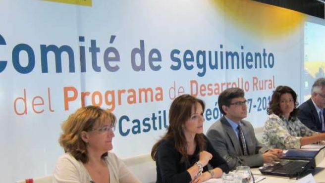 Comité De Seguimiento Del Programa De Desarrollo Rural En Cyl