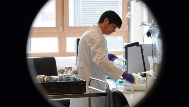 Una técnico de laboratorio realiza pruebas de semillas germinadas procedentes de un distribuidor de Baja Sajonia, en un laboratorio de Oldenburgo, Alemania.