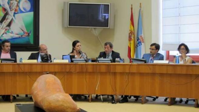 El Valedor Do Pobo Y La Presidenta Del Parlamento Gallego En La Comisión