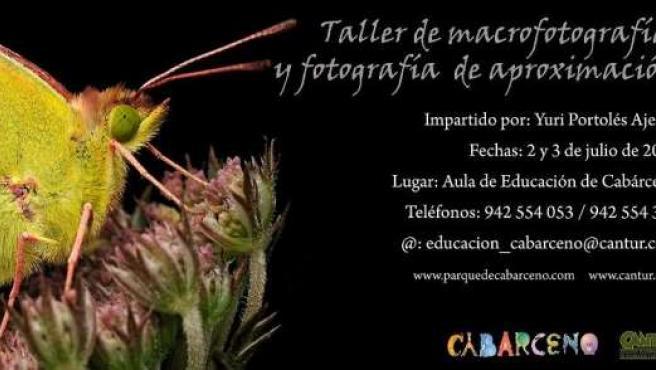 Cartel Curso De Fotografía