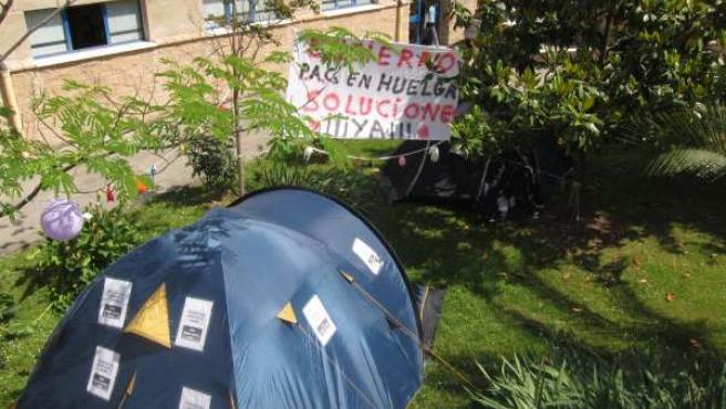 Protesta De Los Pacs