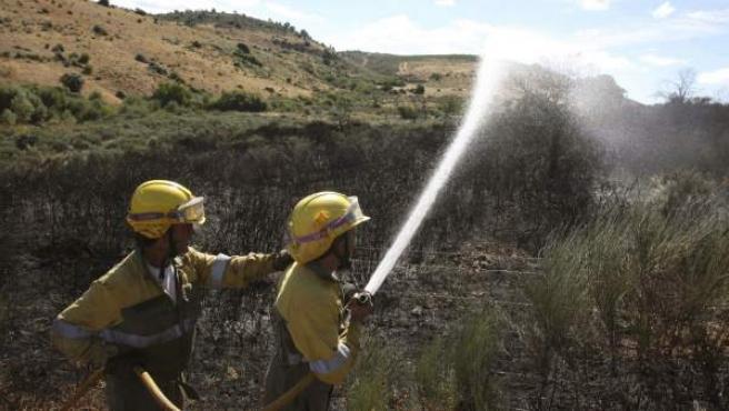 Dos bomberos riegan el perímetro de una zona incendiada.