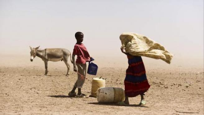 Somalia está sufriendo la peor hambruna en 20 años y 3,7 millones de personas corren el riesgo de morir por inanición.