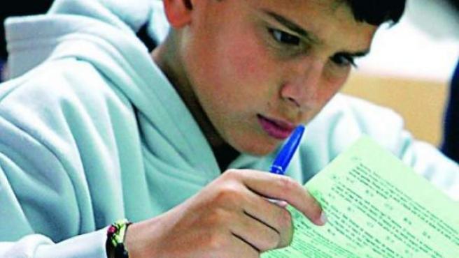 Un joven estudiante de matemáticas.