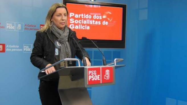 Carmen Gallego, Diputada Del Psdeg