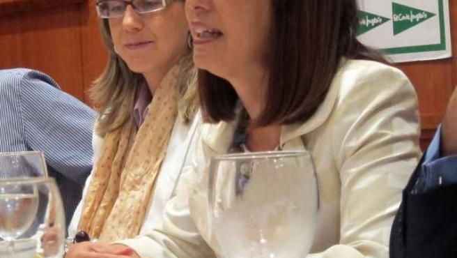 La Alcaldesa De Benavides De Órbigo, Ana Rosa Sopeña