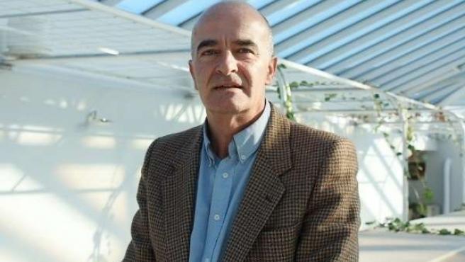 Luis Carlos Albalá, Diputado PP Cantabria