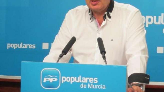 José Antonio Ruiz Vivo, Portavoz Del Partido Popular De La Región De Murcia