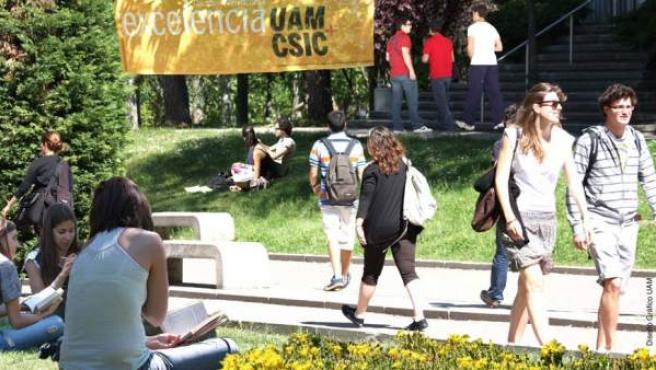 Universitarios en el Campus de la Universidad Autónoma de Madrid.