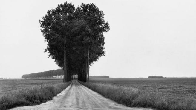 Una de las fotos de la exposición Henri Cartier-Bresson. The Geometry of the Moment Landscapes