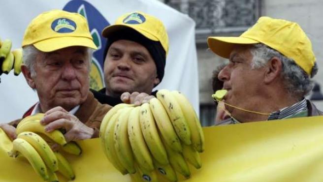Productores De Plátano Canario Reparten 20.000 Kilos En Madrid