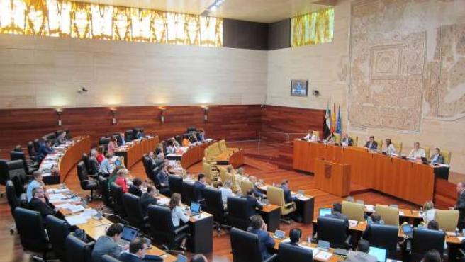 Pleno En El Parlamento