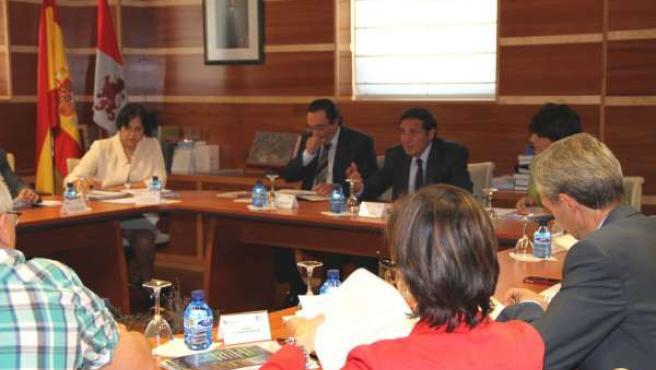 Consejo General De Salud De Castilla Y León