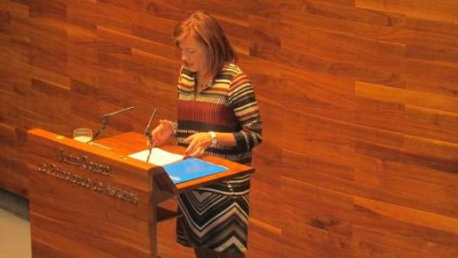 Isabel Pérez Espinosa Durante Su Intervención En El Pleno.