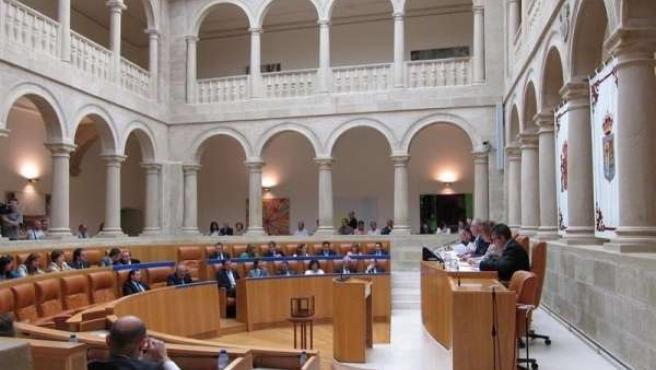 Pleno Parlamento Riojano
