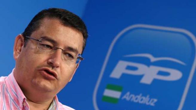 Antonio Sanz En Rueda De Prensa