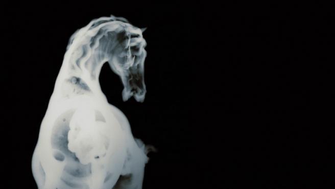 Una de las fotos de radiografías de David Maisel, autor de 'History's Shadow'