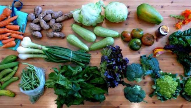 Es básico para la salud que estén presentes en la dieta diaria.