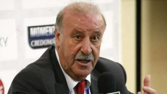 El entrenador de la selección de España, Vicente del Bosque.