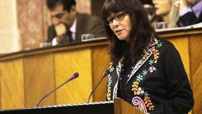Micaela Navarro Interviene En El Pleno Del Parlamento