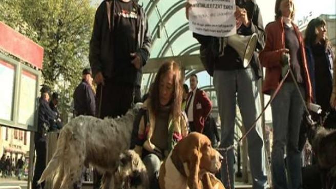 Concentración De Animalistas Ante Metro Bilbao