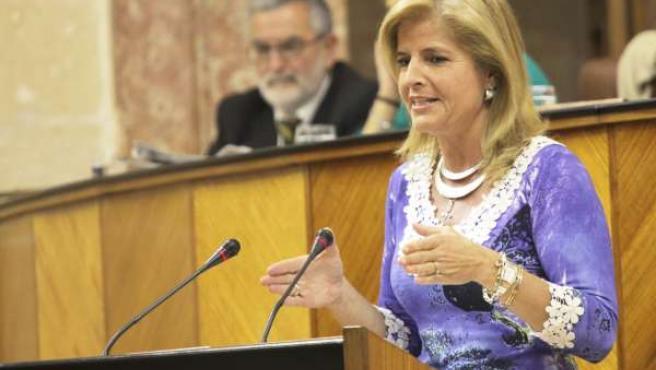 Esperanza Oña Interviene En El Pleno Del Parlamento