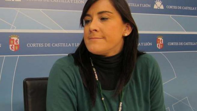 La Procuradora Socialista Ana Sánchez En Una Rueda De Prensa