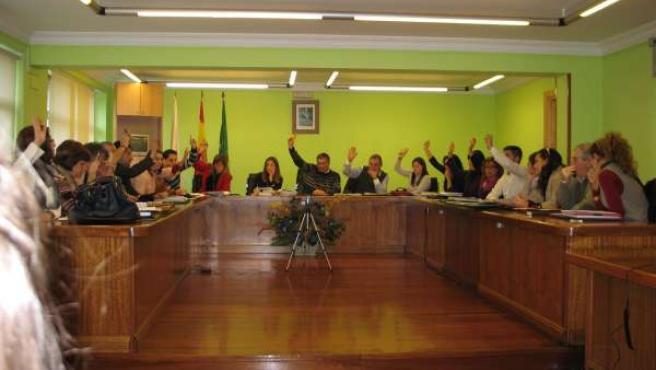 Pleno Municipal De Piélagos