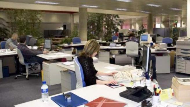 Trabajadores en la oficina de un organismo público.