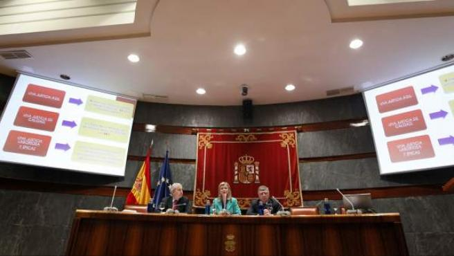 Los vocales del CGPJ, Antonio Dorado (i) y Miguel Carmona (d), junto a la portavoz del CGPJ, Gabriela Bravo.