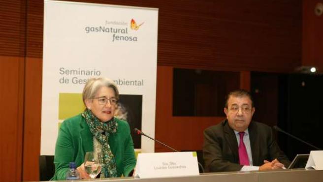 Goicoechea Y Pedro A. Fábregas (Fundación Gas Natural Fenosa).