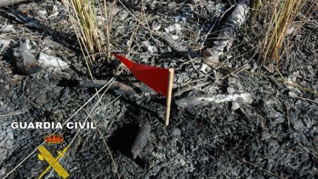 Restos De Un Incendio En La Provincia De Huelva.