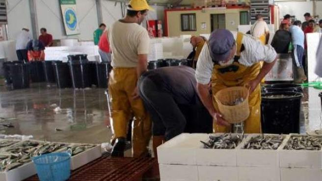 Imagen de archivo de varios pescadores en una lonja.