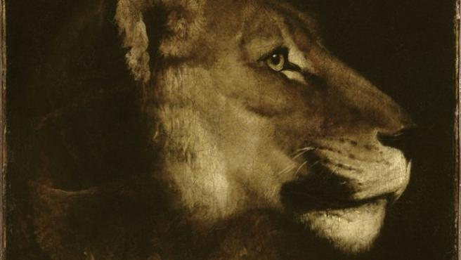 'Cabeza de leona', un cuadro del pintor romántico Théodore Gericault