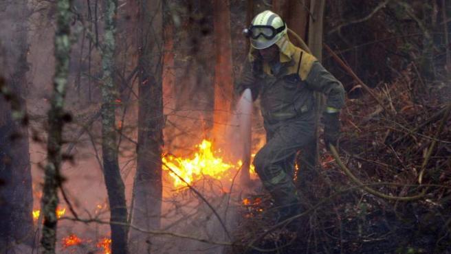 A las tareas de extinción del incendio de las Fragas do Eume han acudido más de 200 militares de la Unidad Militar de Emergencias (UME).