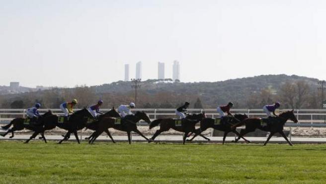Carrera de caballos en el Hipódromo de La Zarzuela. Al fondo, las torres de la Castellana.