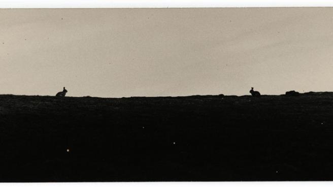 Una de las fotos de Yamamoto incluídas en la exposición de Barcelona